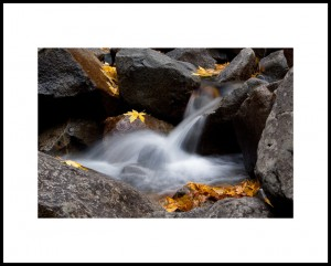 Autumn Brook_Greg Geren