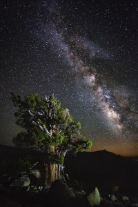 """High Sierra & Milky Way"" by Ian Bomarth"