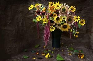 Autumn Beauty Sunflowers